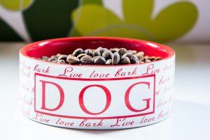 karma dla psów, sucha karma, jedzenie dla psów